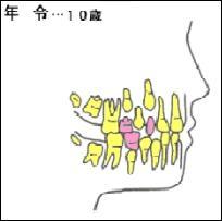 10sai
